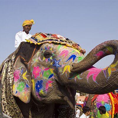 Diwali and Rajasthan Oct 2016
